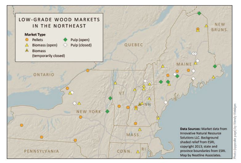 With fewer places to sell low-grade wood, loggers are hurting