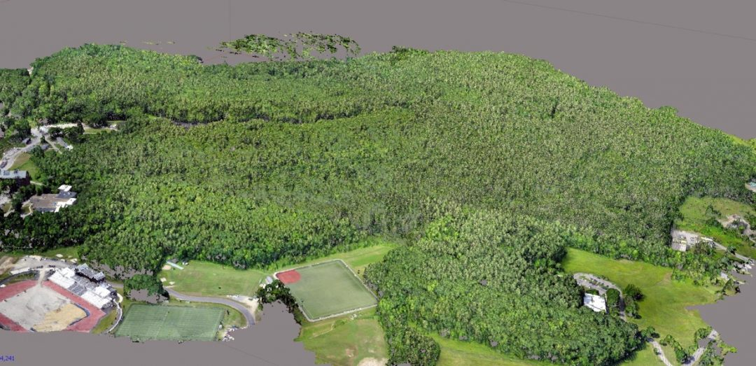UNH finds that drones can analyze forests, but don't fly too low