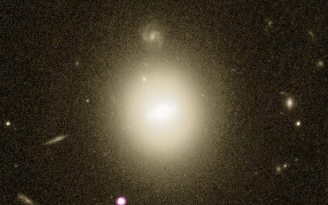 A mid-sized black hole spotted via an astronomical photobomb