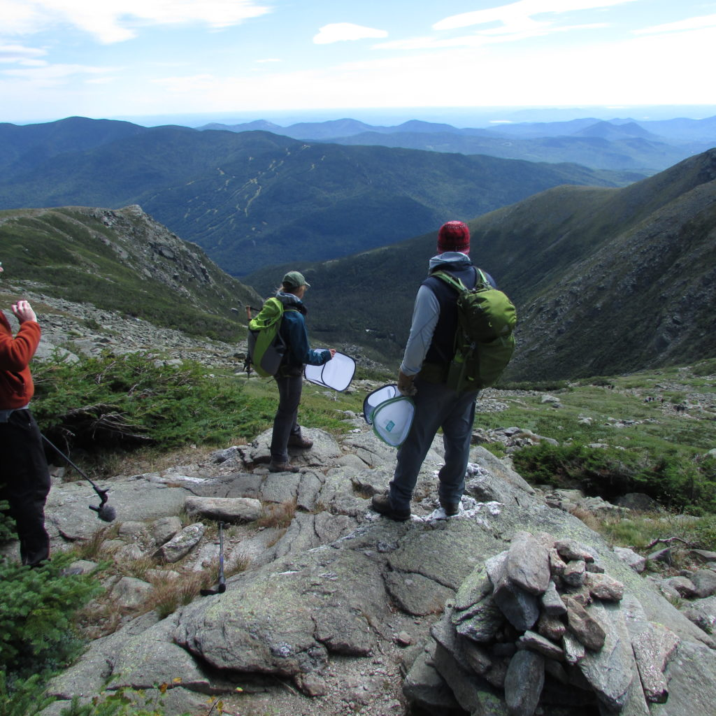 Biologist Heidi Holman of New Hampshire Fish & Game (left) and  biologist Steven Fuller of U.S. Fish and Wildlife Service, above  Tuckerman Ravine on Mount Washington.