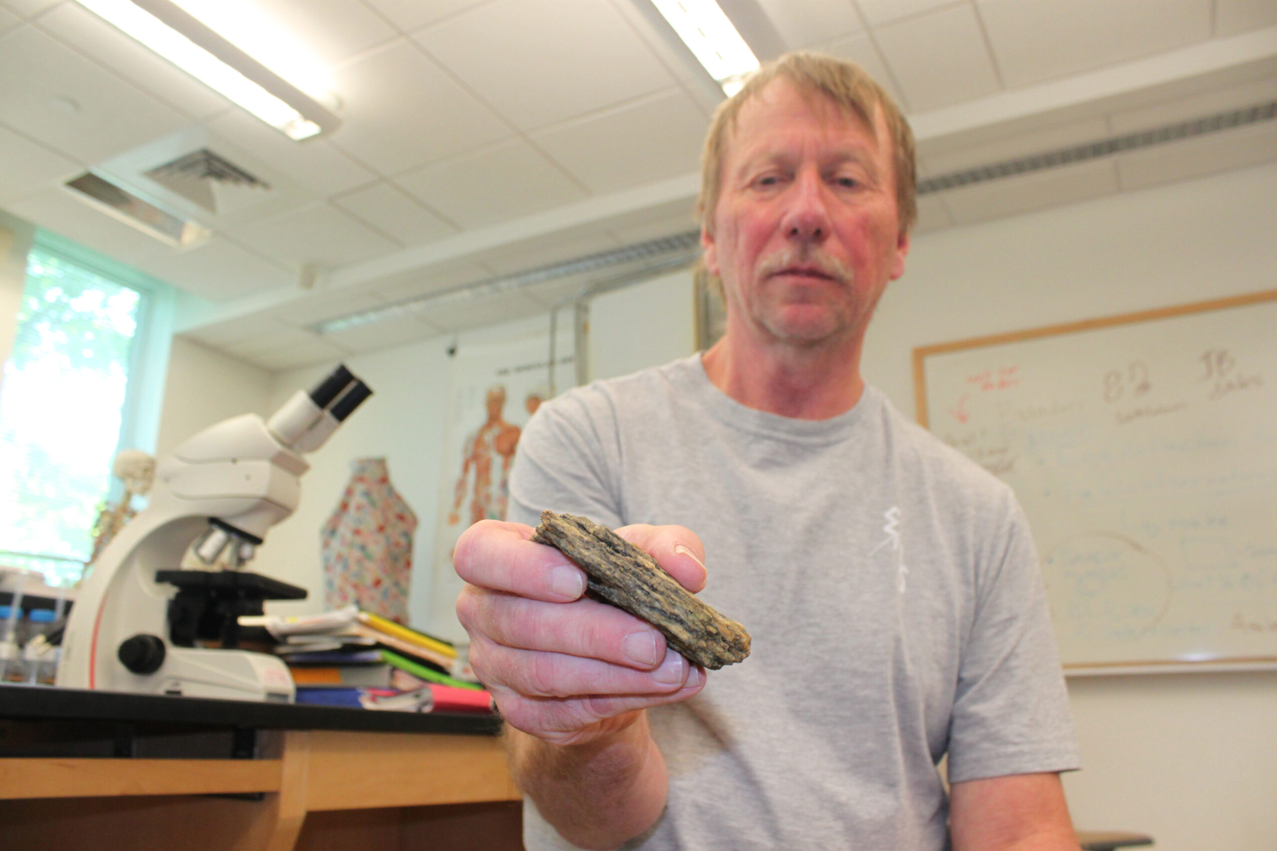 State dinosaur? State fossil? N.H. geology makes both unlikely